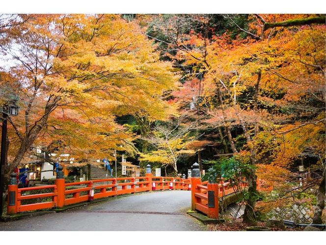 秋の高雄散策
