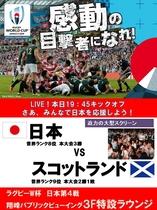 日本VSスコットランド戦