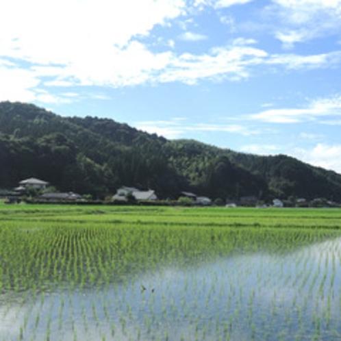 日本の原風景が残る山江村。穏やかな時間が流れます