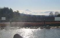 パノラマ温泉 付近500m(徒歩7分)