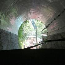 *【周辺情報】大山ケーブルーカーからの車窓。急勾配を登っていきます。