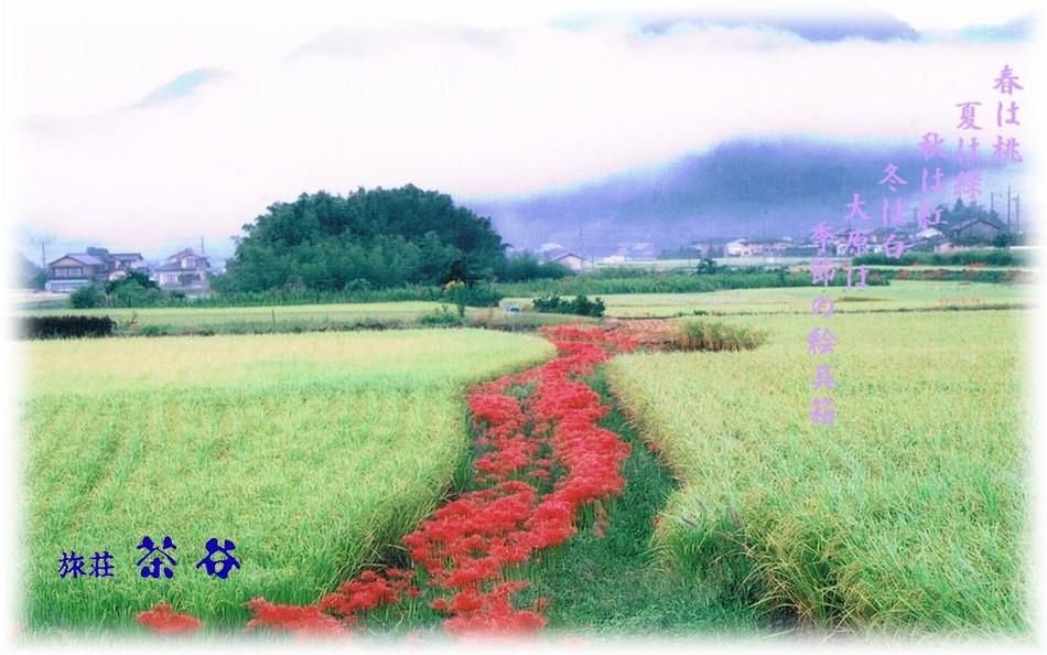 ■大原風景