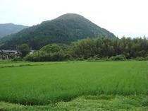 旅荘茶谷自家農場