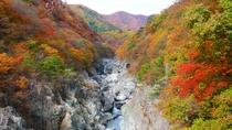 【龍王峡】葉が紅く色付きはじめる季節には、渓流美ならではの景色が広がります。