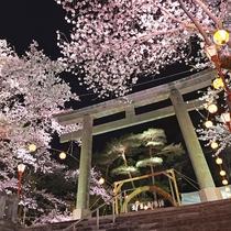 夜桜大宴会