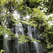 【庭園露天風呂】滝の音に耳を澄ましながらお湯につかれば、日々の雑事から、すっと解き放たれます。
