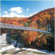 【 周辺情報 】やまびこ吊橋の紅葉