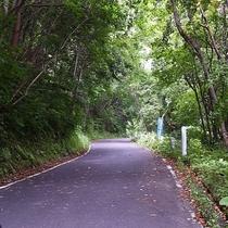 【 周辺情報 】笹谷峠 当館から車で2分♪