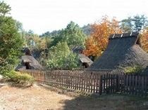 弥生の森歴史公園♪