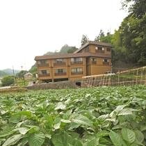 *外観&当館自慢の畑  採れ立ての新鮮なお野菜や自家製のお米をお楽しみいただけます