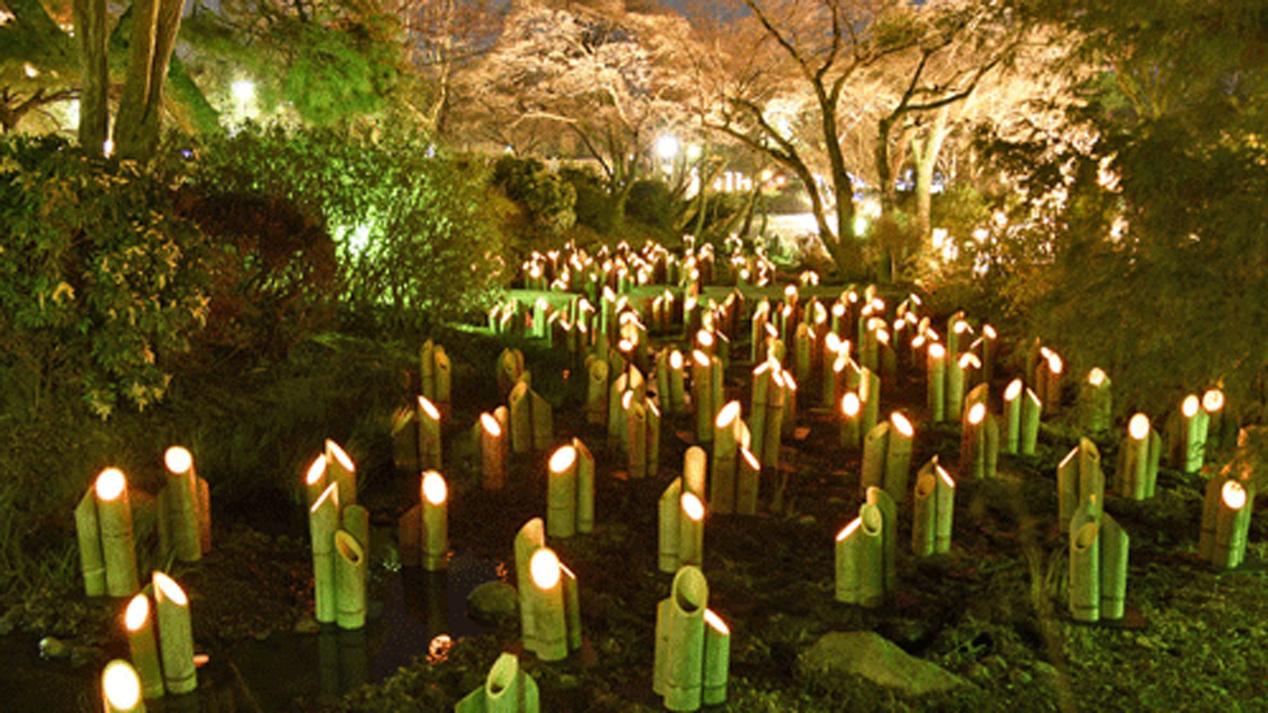 写真提供:京都・花灯路推進協議会「竹灯り・幽玄の川」