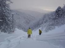 スキー場0m!林道コースで滑って行けて滑って帰れます