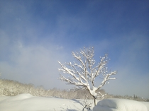 雪景色 青空