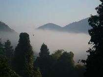 津和野の町を霧がつつむ
