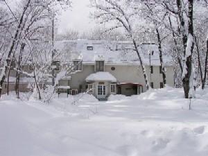 冬の植物誌全景