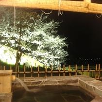 貸切露天で花見風呂☆彡ライトアップもありますよ~