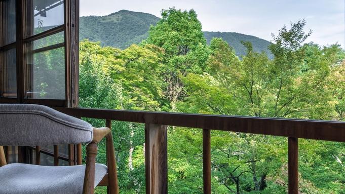 【連泊割】連泊でのんびり温泉・箱根めぐり◆思い思いの時間を過ごす