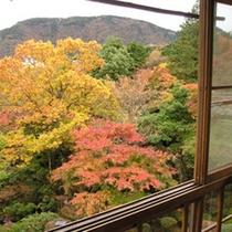 *【紅葉】本館2階「竹」毎年秋には、華清園(庭)に広がる紅葉をお楽しみいただけます。