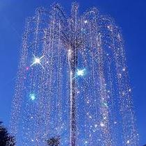 *ガラスの森美術館 美しいクリスタルカラーの木々をお楽しみいただけます。
