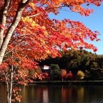 女神湖 紅葉1