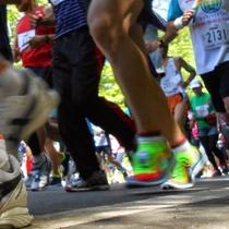6月にはビーナスマラソンが開催