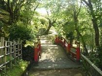 森林浴の気分・庭園内の太鼓橋