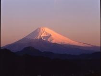 大仁ホテルからの富士山②