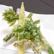 *山菜の天ぷら