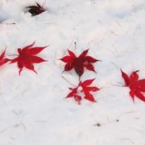 ☆周辺・景色_冬_雪