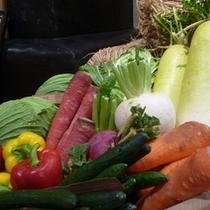 地物食材 野菜