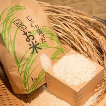 *【御食事】当館のお米は自家製イセヒカリと国産米のブレンド米です