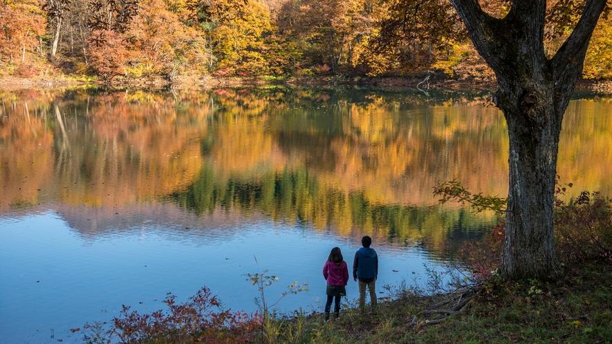 【鴫の谷地沼】当館から車で5分程、一周1.2㎞の散策道。周囲の紅葉と、水面に映る色づいた山々が見事♪