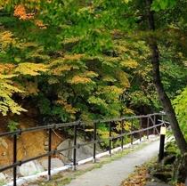 川沿いの大露天風呂へ続く紅葉の道