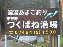 あまご釣り場
