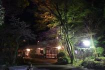 夜の杉ヶ瀬