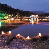 燈花会(奈良公園1)