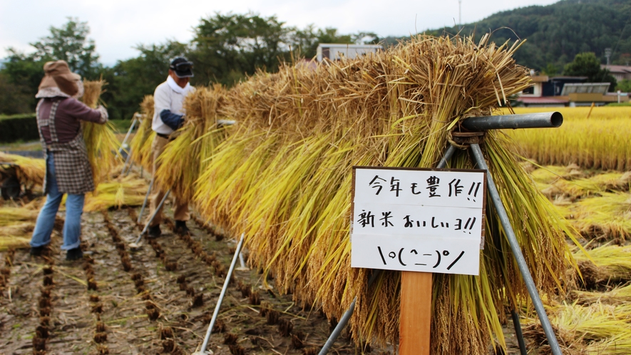 ◆自家製米。今年も美味しく出来ました\(^o^)/