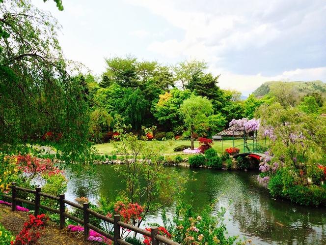 【観光】四季の里 緑水苑・・・約3万坪に及ぶ自然型池泉回遊式の花庭園。四季折々の花が楽しめます。