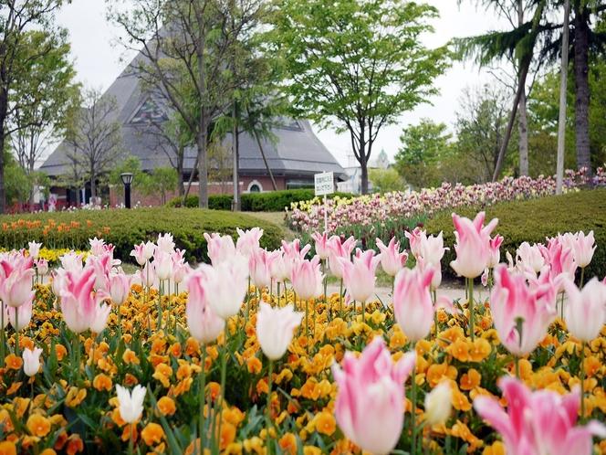 【観光】21世紀記念公園 麓山の杜・・・「花・緑・水」をテーマにした市民憩いの場。お散歩にぴったり。