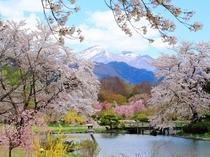 【春】緑水苑