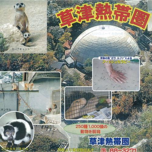草津熱帯圏〜トロピカルジャングル〜