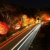 (紅葉見頃終了まで)紅葉ライトアップ(道の駅「草津運動茶屋公園」)