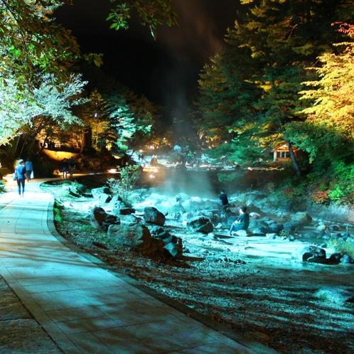 【秋】西の河原公園のライティング