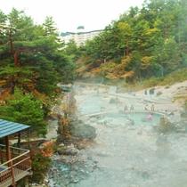 西の河原公園(秋)
