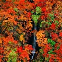秋山郷 蛇淵の滝