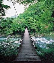 見倉つり橋