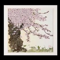 押し花(山桜)