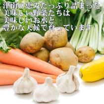 津南で取れた美味しい野菜は自然の恵みいっぱい