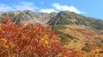 *周辺/紅葉の立山。色づく季節の一瞬をお見逃しなく!