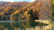 *周辺/中綱湖の秋。美しい紅葉が湖に映えます。